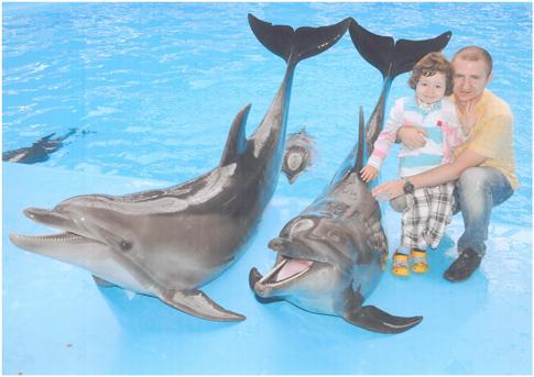 Дельфинарий Киев